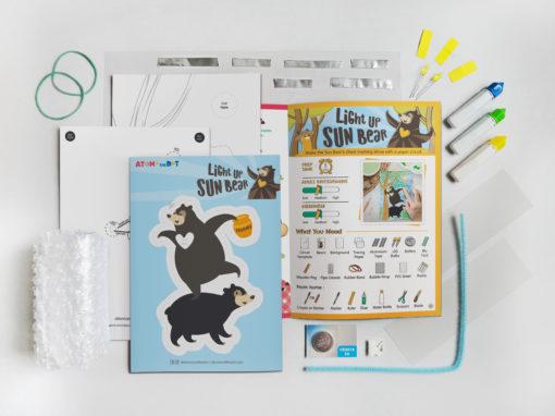 Sun Bear Activity Box
